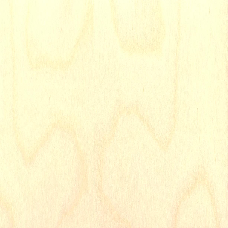 sorvattu koivu - puuviilu